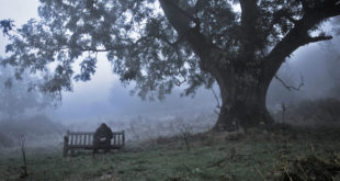 man sitting in foggy and cloudy day